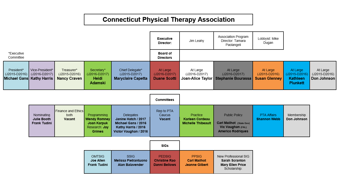 Ctapta Organizational Chart Connecticut Physical Therapy